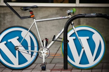 WordPress-b